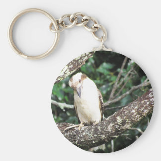 Australian Kookaburra Waiting For Food Keychain