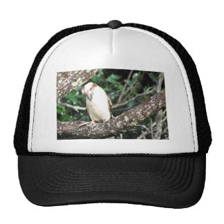 Australian Kookaburra Waiting For Food Trucker Hat