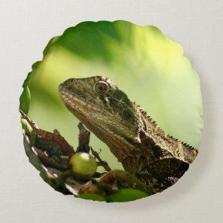 Australian lizard hiding between leaves, Photo Round Pillow