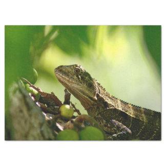 Australian lizard hiding between leaves, Photo Tissue Paper