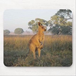 Australian Morning Product Range Mouse Pad