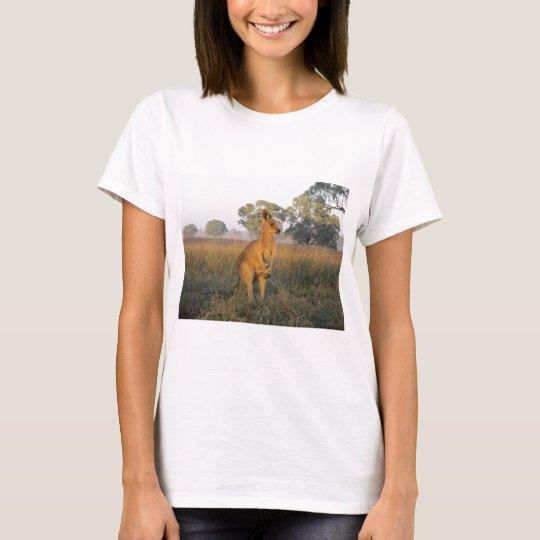 Australian Morning Product Range T-Shirt