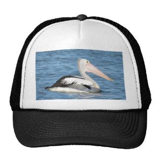 Australian Pelican Hat