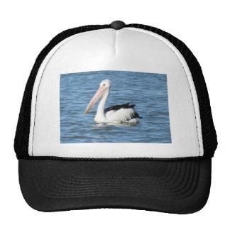 Australian Pelican Mesh Hats