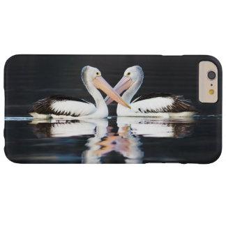 Australian Pelicans Pelecanus Conspicillatus Barely There iPhone 6 Plus Case