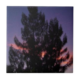 Australian Pine Trees Sunset Ceramic Tile