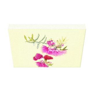 Australian Pink Gumnut Gum Flower Wrapped Canvas