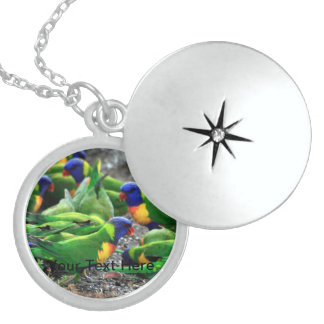 Australian Rainbow Lorikeets Sterling Silver Necklace