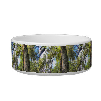 Australian Rainforest Eucalyptus Gum Trees Bowl