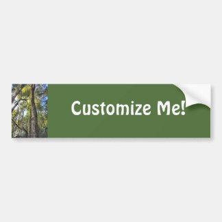 Australian Rainforest Eucalyptus Gum Trees Bumper Sticker