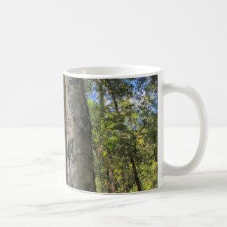Australian Rainforest Eucalyptus Gum Trees Coffee Mug