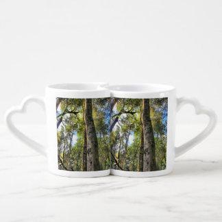 Australian Rainforest Eucalyptus Gum Trees Coffee Mug Set