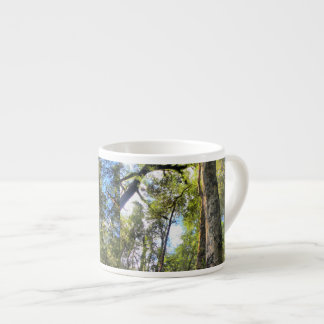 Australian Rainforest Eucalyptus Gum Trees Espresso Cup