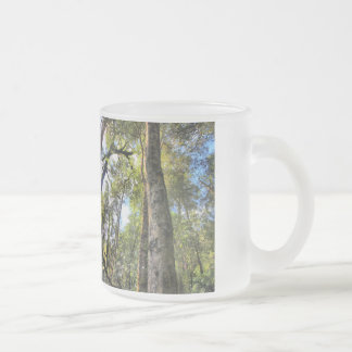 Australian Rainforest Eucalyptus Gum Trees Frosted Glass Coffee Mug