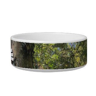 Australian Rainforest Eucalyptus Gum Trees Pet Water Bowls