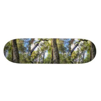 Australian Rainforest Eucalyptus Gum Trees Skateboard