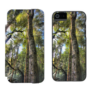 Australian Rainforest Eucalyptus Gum Trees Wallet Case For iPhone SE/5/5s