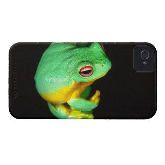Australian Red Eye Treefrog, Litoria chloris, Case-Mate iPhone 4 Case