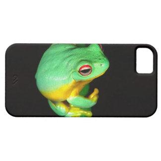 Australian Red Eye Treefrog, Litoria chloris, iPhone SE/5/5s Case