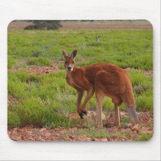 Australian red kangaroo mousepad
