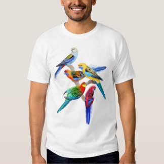 Australian Rosella Parrots T-Shirt