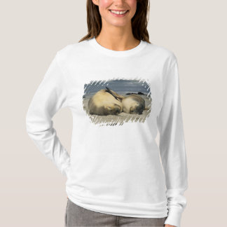 Australian Sea Lions, Neophoca cinerea), T-Shirt