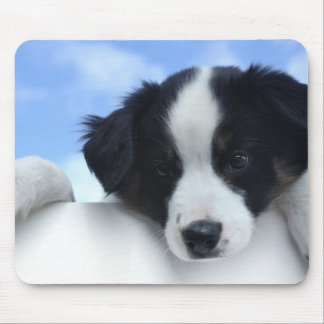 Australian Sheepdog Puppy Mouse Pad