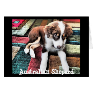 Australian Shepard Puppy Make Your Own Custom Cards