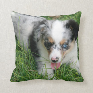 Australian Shephard Throw Pillow