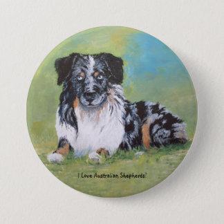 Australian Shepherd, beautiful blue merle! Pinback Button