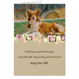 Australian Shepherd Birthday Greeting Card