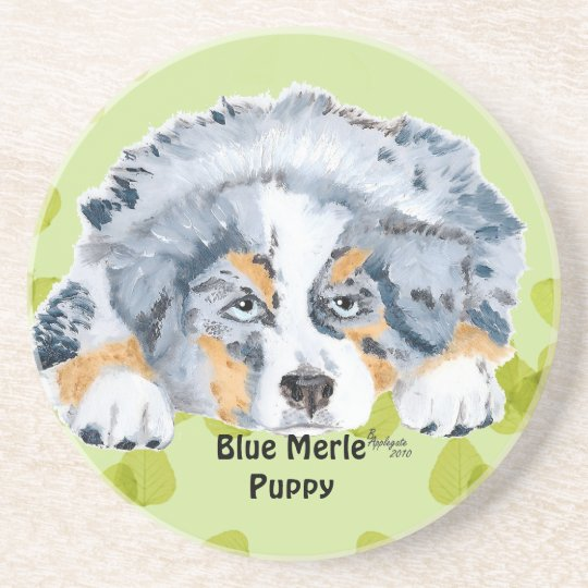 Australian Shepherd Blue Merle Puppy -Green Leaves Drink Coaster