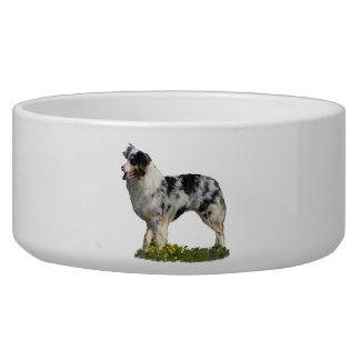 Australian Shepherd Bowl