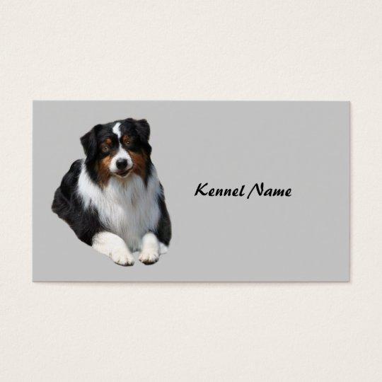 Australian Shepherd Breeder Business Card