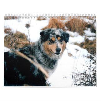 Australian Shepherd Calander Calendar