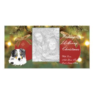 Australian Shepherd Christmas Photocard Card