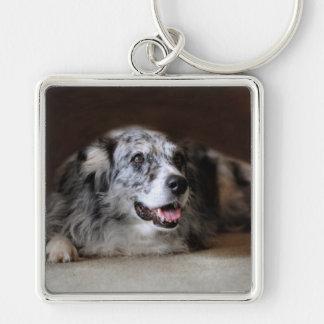 Australian Shepherd Classic Photo Keychain