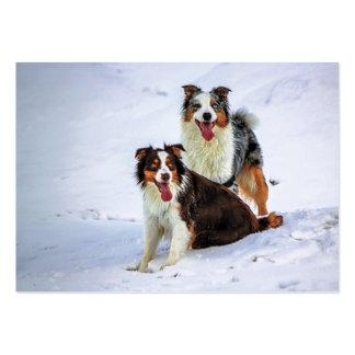 Australian shepherd couple dogs large business card