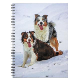 Australian shepherd couple dogs notebook