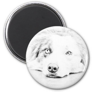 Australian Shepherd dog art 2 Inch Round Magnet