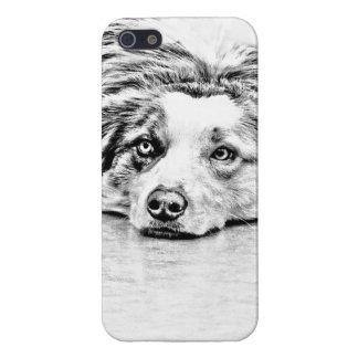 Australian Shepherd dog art iPhone 5 Cases