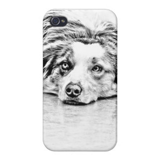 Australian Shepherd dog art Covers For iPhone 4