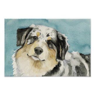 """Australian Shepherd"" Dog Art Print"