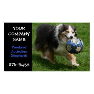 Australian Shepherd Dog Breeder Business Card