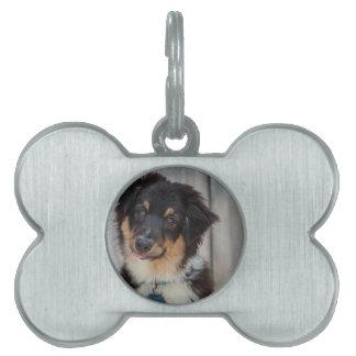 Australian Shepherd Dog Pet Name Tag