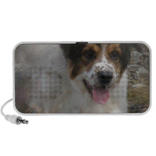 Australian Shepherd Dog Speakers