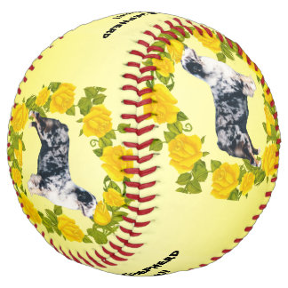 Australian Shepherd Dogs Rock!! and Yellow Roses Softball