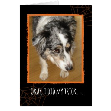 Halloween Themed Australian Shepherd Halloween Trick and Treats Card