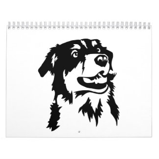 Australian shepherd head wall calendars