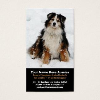 Australian Shepherd in Snow Breeder Business Cards